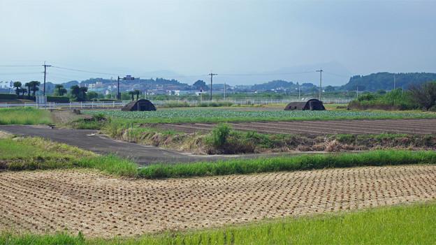 赤江飛行場の弾薬庫跡 (2)