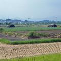 写真: 赤江飛行場の弾薬庫跡 (2)