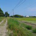 写真: 宮崎空港横の掩体壕 5号基 (1)