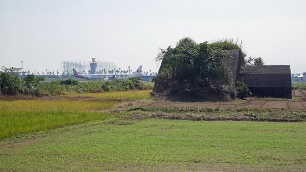 宮崎空港横の掩体壕 6号基 (3)