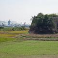 写真: 宮崎空港横の掩体壕 6号基 (3)