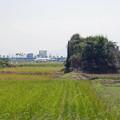 写真: 宮崎空港横の掩体壕 6号基 (4)
