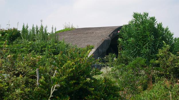 宮崎空港横の掩体壕 7号基 (4)