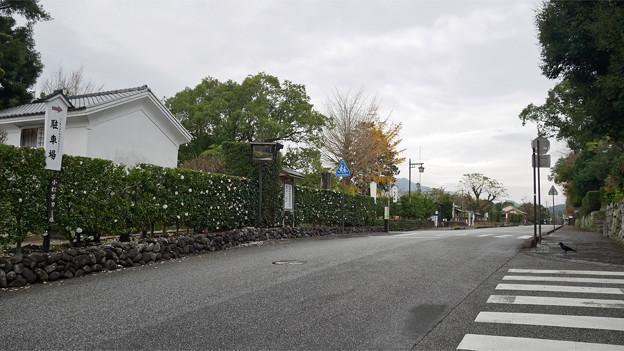 竹添邸 (3)