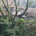 Photos: 湯川内温泉 かじか荘 (6)