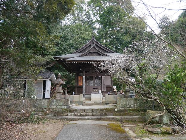 嘉麻市梅林公園 (5) 安国寺