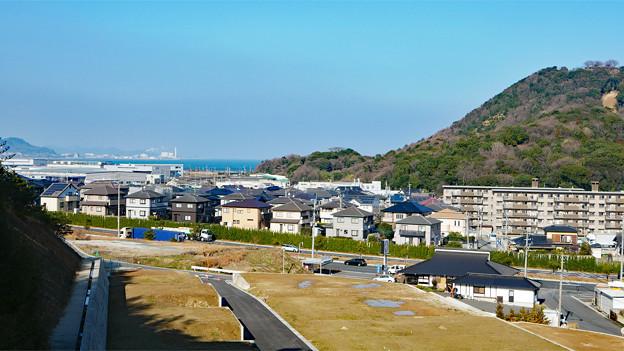 向山公園 (7)