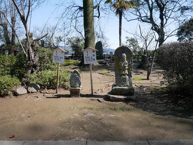 杵築城 (26) 石造物公園