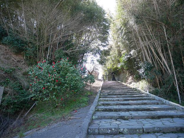番所の坂 (4)