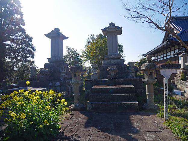 養徳寺 (4)