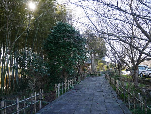 養徳寺 (1)