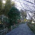Photos: 養徳寺 (1)