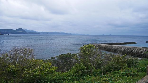 道の駅 生月大橋 (5)