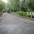 城山小学校の永井坂 (1)