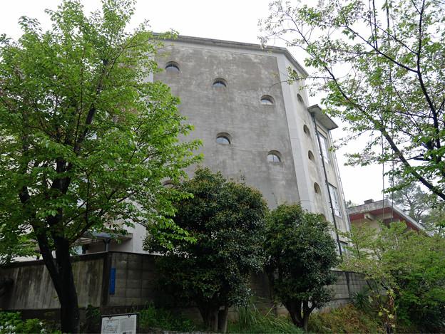 城山小学校 (7)
