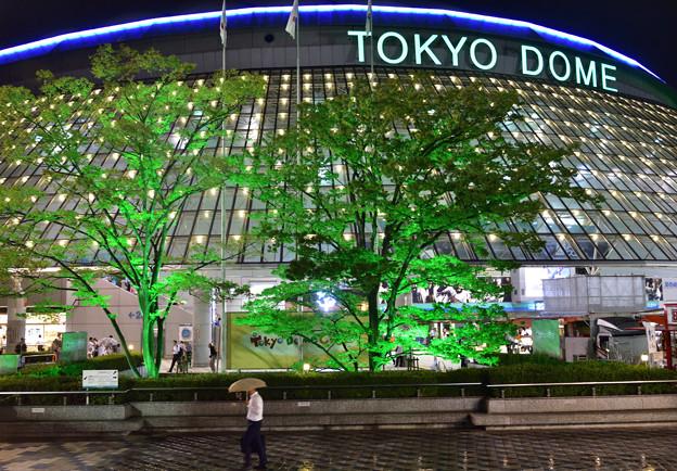 東京ドーム雨