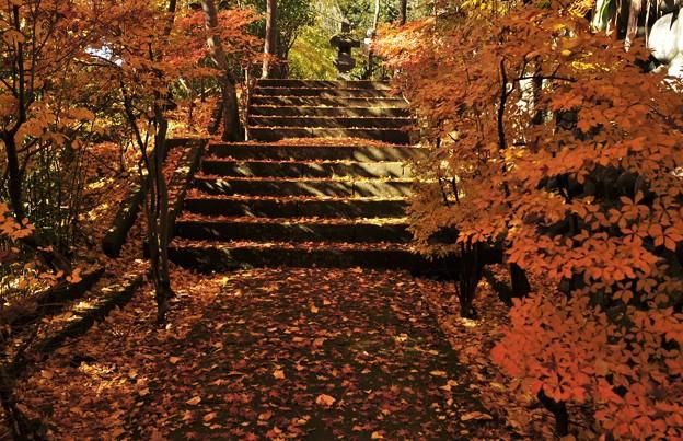 登りたくない階段