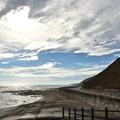 Photos: 海の残暑