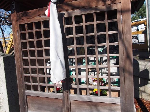 Photos: setanokarabasi19