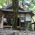 Photos: siganodaibutu03