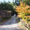 Photos: siganodaibutu05