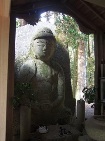 siganodaibutu19
