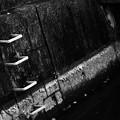 写真: 人工の河川