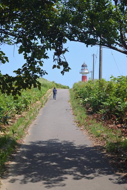 灯台への道行き