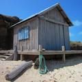 写真: 木屋