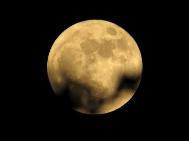 消逝的月光