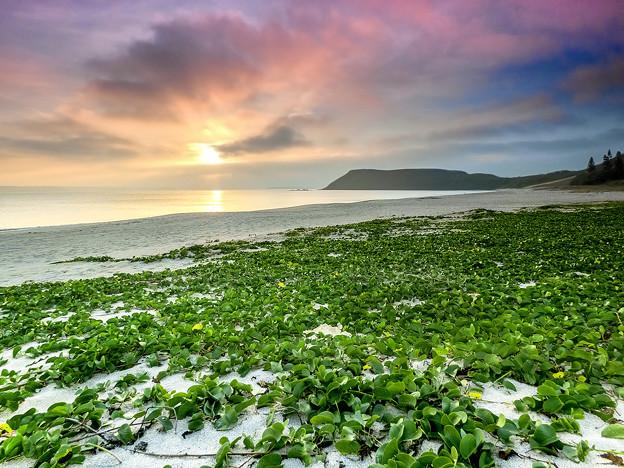 Photos: ?裡沙灘