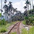 写真: 林間鐵道