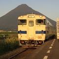 写真: 早朝の列車