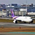 Photos: タイ航空