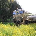 Photo: 唐津線・或る列車