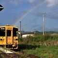 Photos: 虹とゾンビランドサガラッピング列車