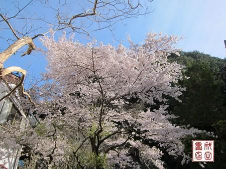 黒山三滝03
