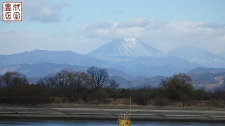 渡良瀬遊水地01