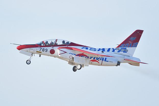 写真: 芦屋基地航空祭 スペシャルマーキング