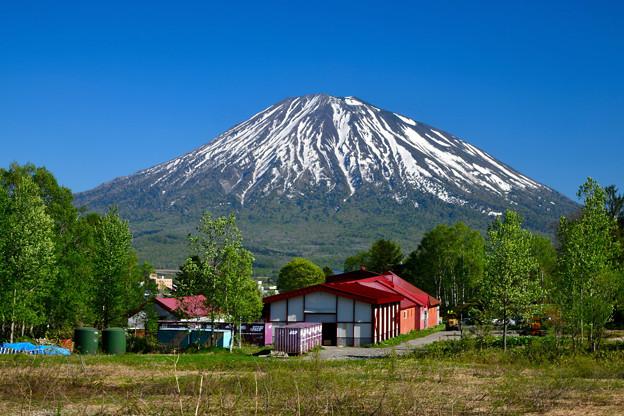 北海道の富士。羊蹄山
