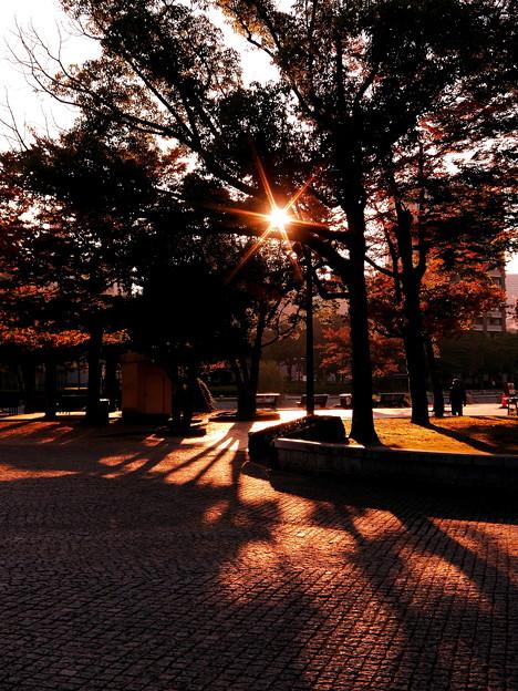 ~今朝のお散歩画~Sunrise~♪