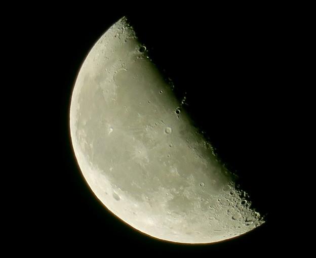 ~月のウサギ・・それは