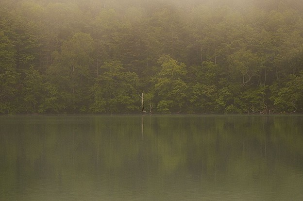 写真: 静寂