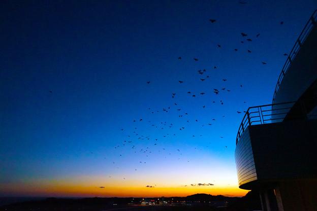 南紀白浜の夕暮れ