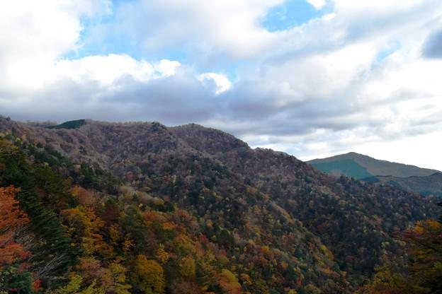 秋の山 5