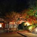 写真: 秋、深まりゆく 1