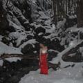 Photos: Snow