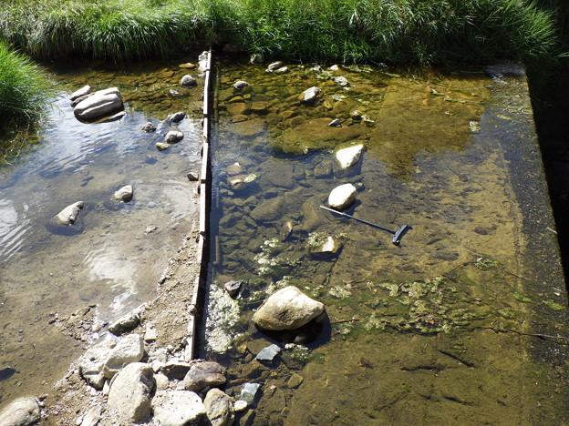 河川水量減少1
