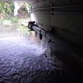 排水口状態