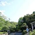 Photos: 長等公園